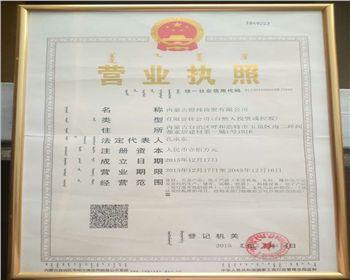 内蒙古煜炜新材料技术有限公司营业执照